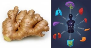 This Will Happen to Your Body If You Eat Ginger Every Day for a Month
