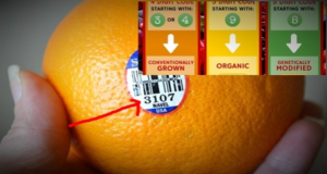 Be Careful! What Are You Buying: Did You Know What Does The Stickers On The Fruits Mean ?