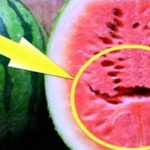 Do You Love Watermelons?? If You See This Split Inside Watermelon Throw It Right Away!!! Here's Why…